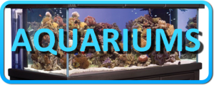 AQUARIUMS Button
