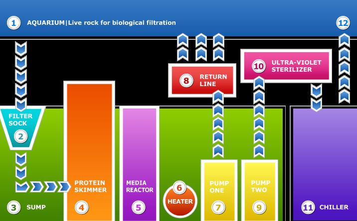 biological-filtration
